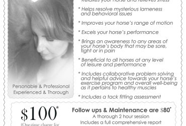 Equine Massage Therapy…Specializing in helping horses with difficult/mysterious issues