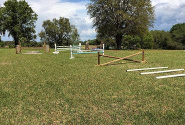 Horse boarding – Pasture, Stall, Retirement, Rehab