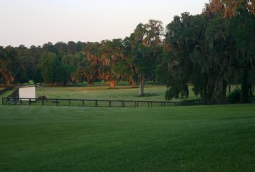 Quality pasture board for select horses and ponies in NW Marion County in Horse Farm Preservation Area.