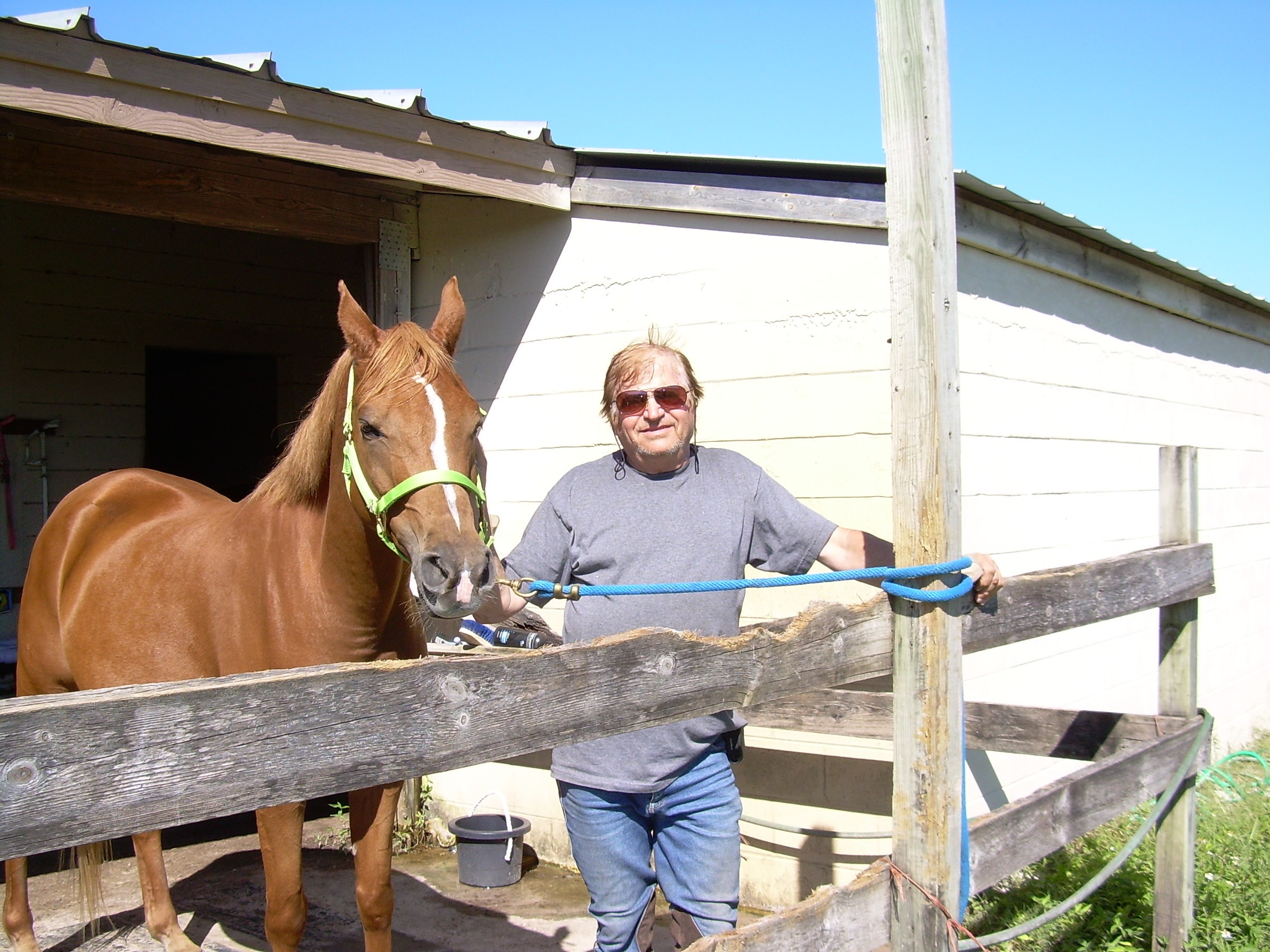 Experienced adult wants to lease your horse…Ocala, Belleview etc