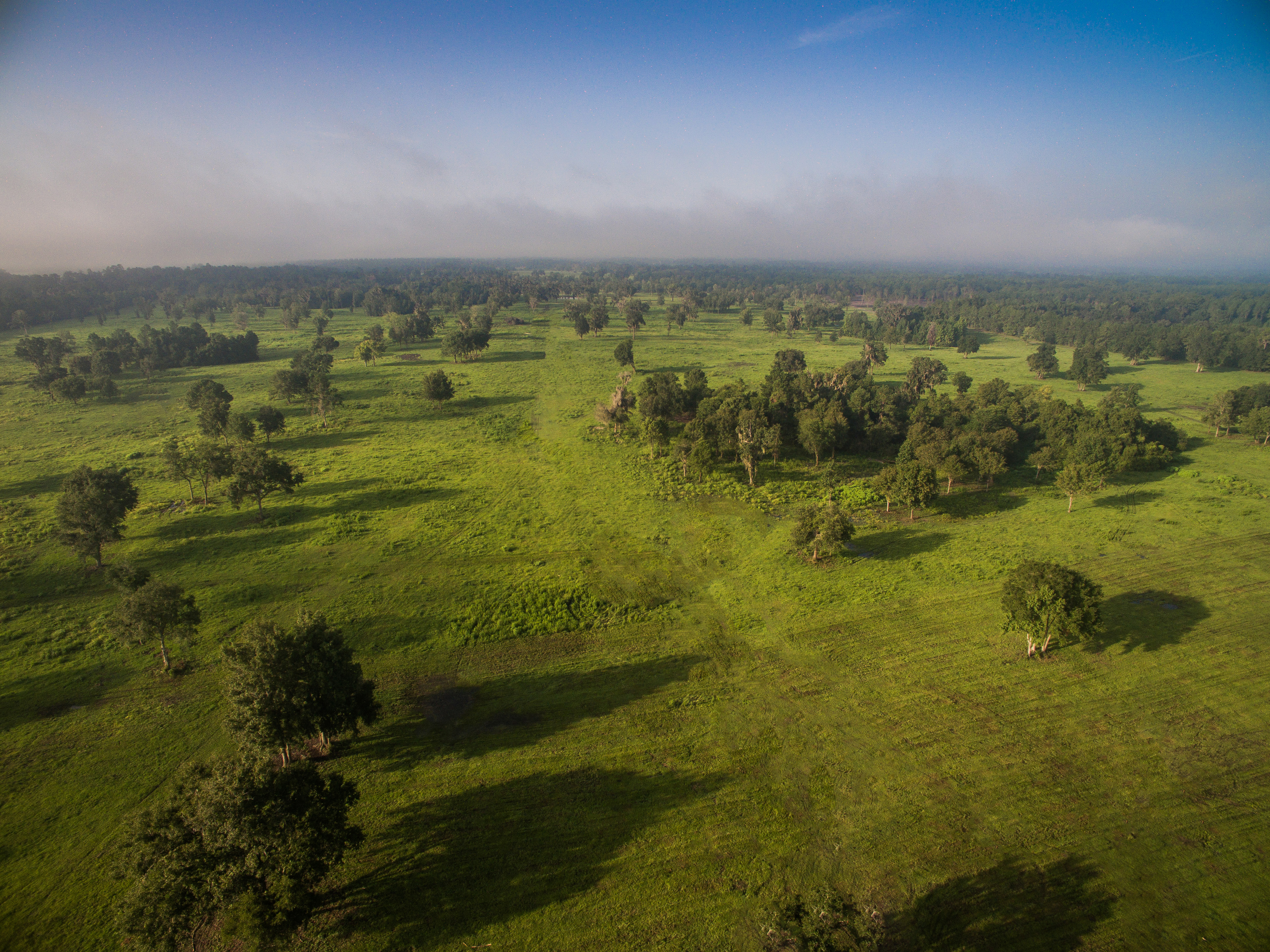 876 +/- Acres in NW Ocala – Close to World Equestrian Center